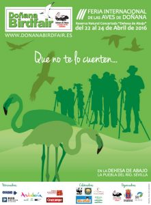 cartel bird fair